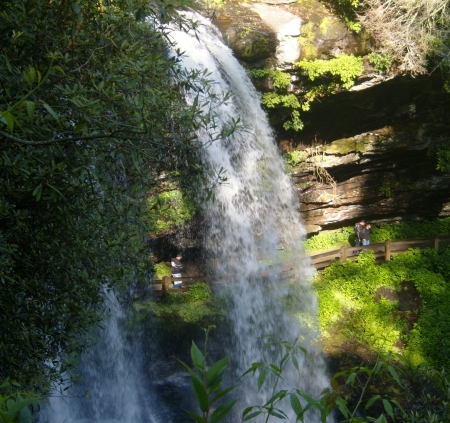 national forest: Natahala National Forest, Carolina del Norte, EE.UU. Foto de archivo
