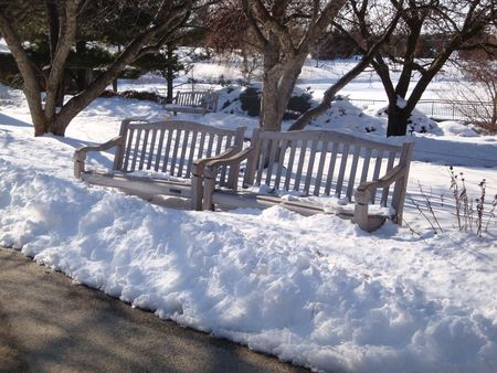park benches buried in snow