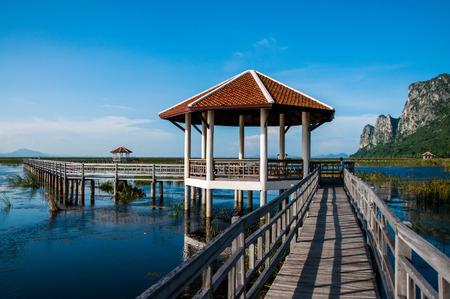 lagoon: Lagoon