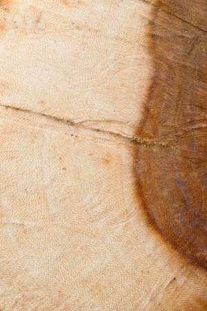 wood texture background Stock Photo - 13263993