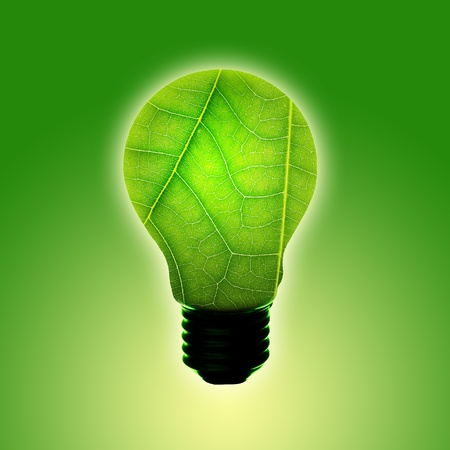green light bulb concept of green energy Stock Photo - 13367503