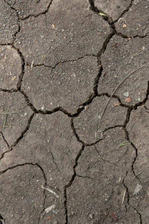 cracked soil texture background photo