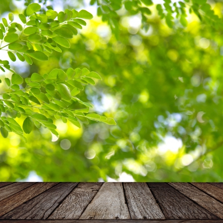 Wooden texture on green leaf background photo