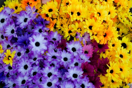 colorful plastic handmade flowers Stock Photo - 16531075