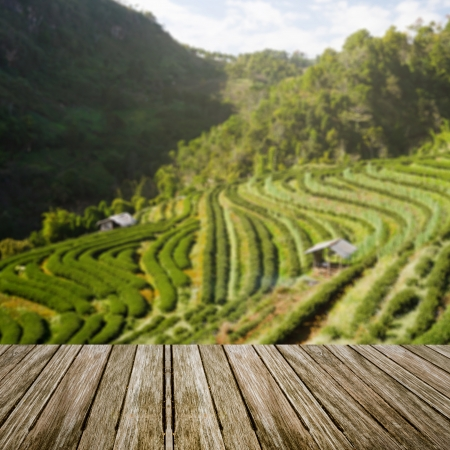 wooden table perspective with blur green field background Stock Photo