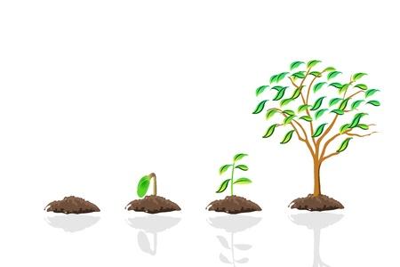 germination: save world, tree growth