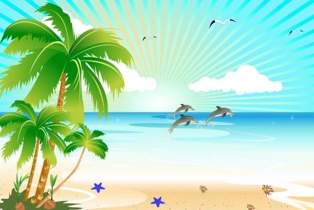 blue crab: sunshine beach