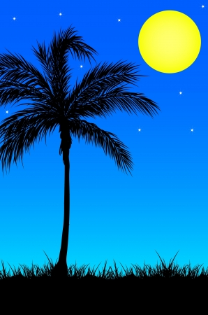 beach background Stock Photo - 15790854