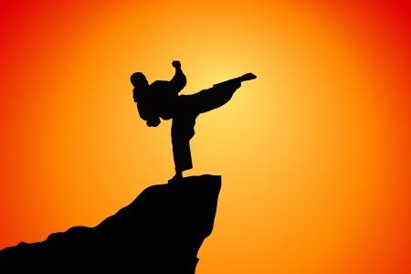 karate fighter: fighter