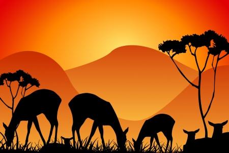 Safari - silhouettes of wild animals as background photo