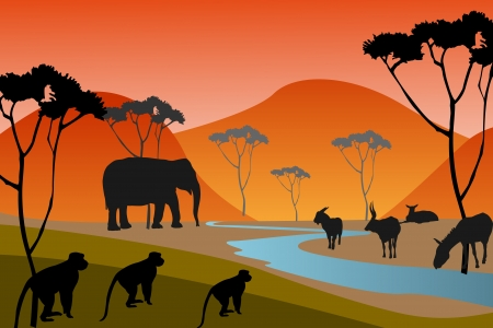 background with African fauna and flora photo