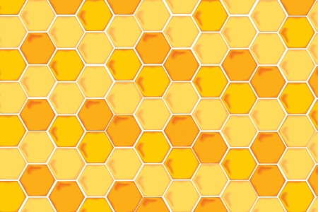 Natural Background with Honeycombs photo