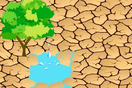 Environmentally Friendly Tree photo