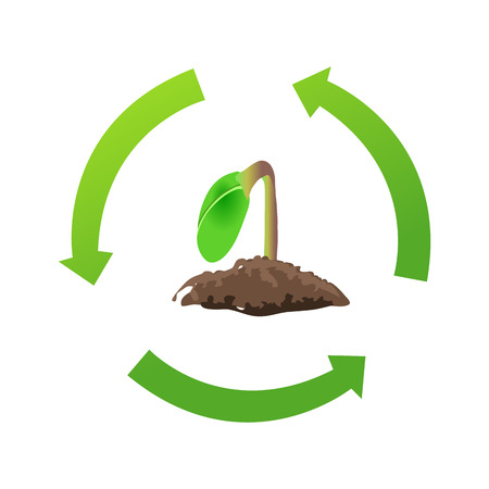 germinate: recycle seed