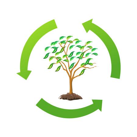 recycle tree Stock Photo