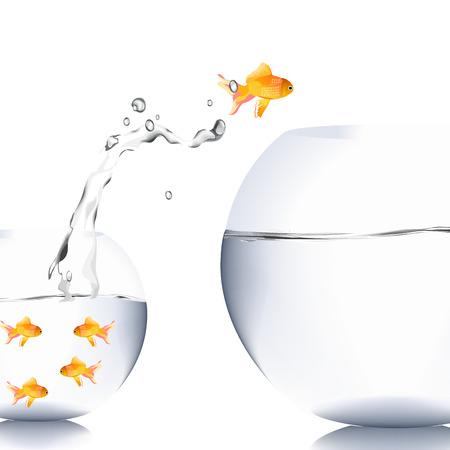goldfish jump: fish jump to the big aquarium Stock Photo