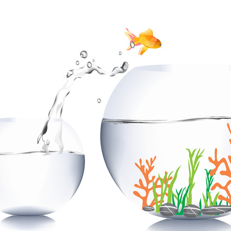gold fish bowl: Make a different concept Stock Photo