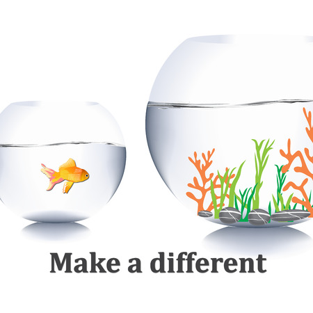 goldfish jump: fish jump out of water