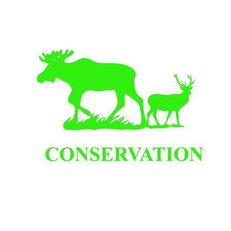 wildlife shooting: Deer conservation Stock Photo