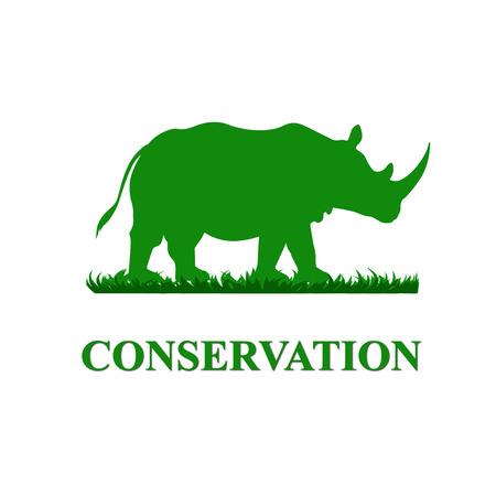 wildlife shooting: Rhinoceros Conservation