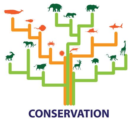 safty: Wildlife safty zone