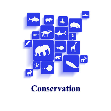 Conservation photo