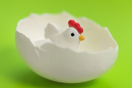 Little toy chicken in the eggshell on a green background