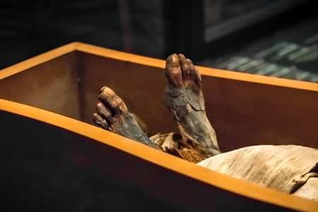 Legs of the ancient mummy in the sarcophagus, close-up Stock Photo