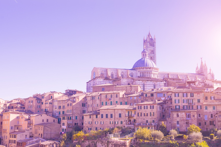 Beautiful medieval town in Tuscany, with view of the Dome & Bell Tower of Siena Cathedral (Duomo di Siena), landmark Mangia Tower and Basilica of San Domenico, Siena, Italy. Toned