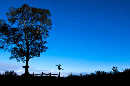 liberation: Happy freedom, of liberation, tongue space, comfortable, cool, sky, clouds, wind, happy nature, most, successful,Tree, Silhouette, landscape. Stock Photo