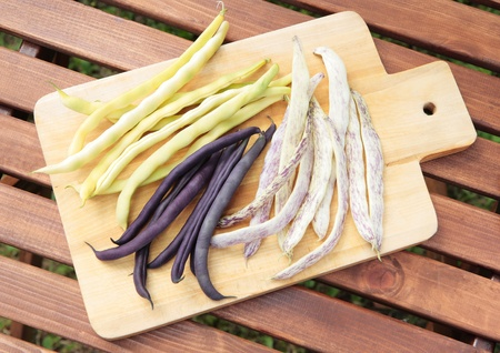 Three types of long beans - yellow, purple and yellow in the purple spots photo