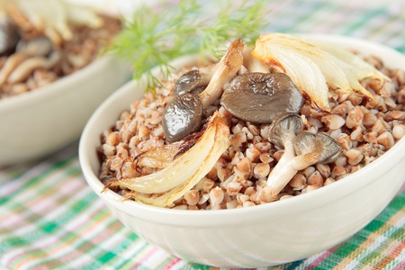 Buckwheat porridge with fried mushrooms and onions Stock Photo - 12871403