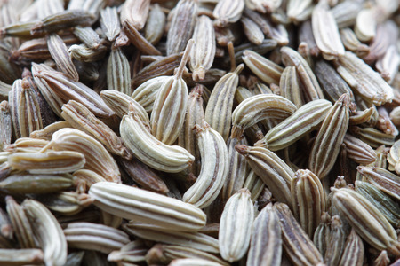 fennel seeds: A large number of scented fennel seeds close-up Stock Photo