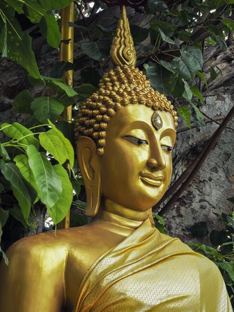 gold: Buddha under the Bodhi tree.