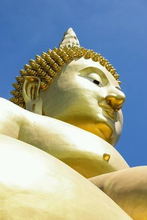 buddha statue: Buddha statue the largest in the world. Stock Photo