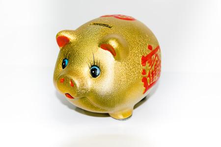 gold mine: The beautiful saving pig gold mine.