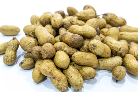 goober: Boiled Peanuts the oval seed of a South American plant, widely roasted and salted and eaten as a snack.