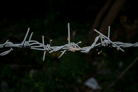 wire with clusters of short, sharp spikes set at intervals along it, used to make fences or in warfare as an obstruction.