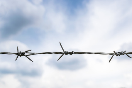 intervals: wire with clusters of short, sharp spikes set at intervals along it, used to make fences or in warfare as an obstruction.