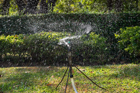 irrigate: Automatic lawn sprinkler in the park.