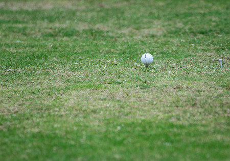 golf equipment: Golf equipment,golf ball with tee on course.