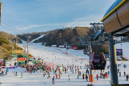 koreans: Soul,Korea-Jan 4,2016: Skier both Koreans and foreigners to come skiing at Vivaldi Park Ski Resort is the Ski area, the hotel and the famous resort of Korea on vacation in the winter every year. Editorial