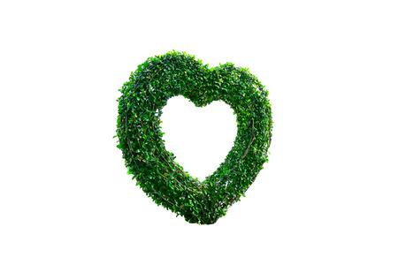 Heart shaped tree isolated on white background.