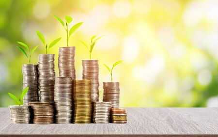 Young plants on coins stack on wood table with beautiful blurred green nature and sunlight background, concept for saving and financial business.