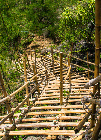 temporary: Temporary bamboo staircas in forest.