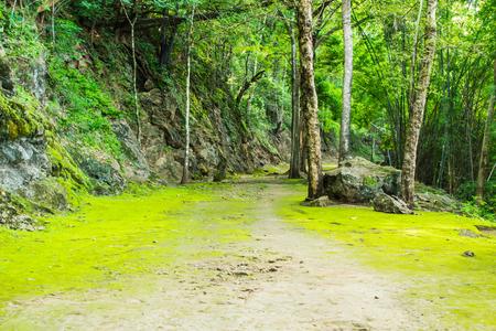 hellfire: Natural path at the Hellfire Pass in Kanchanaburi,Thailand. Stock Photo