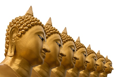 venerate: Seven of Buddha images on white background