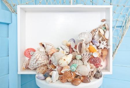 Shellfish Decoration photo