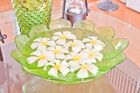 Frangipani flowers in the water of green leaf bowl photo