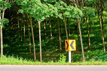 curvaceous: Curve road sign beside the road